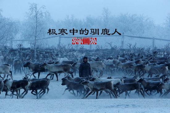 在俄罗斯偏远的涅涅茨地区,放牧驯鹿是一种延续了多个世纪的生活方式。涅涅茨人的生活和驯鹿息息相关。涅涅茨人是俄罗斯原住民族群,多数居住在亚马尔-涅涅茨自治区和涅涅茨自治区,有本民族语言涅涅茨语。传统的涅涅茨人以驯养驯鹿为生,他们的驯鹿与马一样大。但他们现在面临着气候变暖和生态开发的威胁。