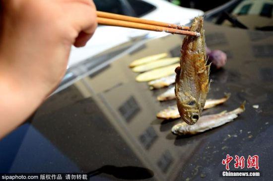"""6月5日,山东滨州的一位女士将鲜鱼、肉片、土豆片、紫薯等食材放在汽车引擎盖上,做起了露天""""烧烤""""。据了解,当天滨州气温飙升直逼40度,将鱼放在滚烫的汽车引擎盖上,仅仅过了半小时,鱼肉就泛黄了。 图片来源:SipaPhoto 版权作品 请勿转载"""