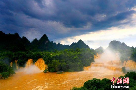 """近日,广西多地遭受强降雨袭击,位于广西崇左市大新县境内的德天瀑布水量暴涨,颜色变浑浊,呈现难得一见的""""黄金瀑布""""壮观景象。在中越界河归春河上游,德天跨国瀑布气势磅礴,与紧邻的越南板约瀑布相连,是亚洲第一、世界第四大跨国瀑布。图为5月27日拍摄于广西崇左市大新县境内的德天瀑布景观。杨虎旺 摄"""