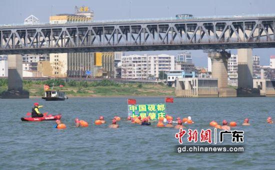 2019肇庆横渡西江活动在肇庆市启动 主办方供图