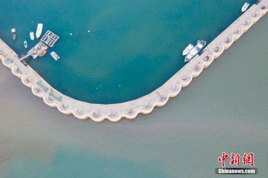 2019年12月4日,山东省青岛市唐岛湾渔港依偎的海湾退潮,渔港堤坝内的海面呈绿色,渔港堤坝外的海水呈灰色,一样海水两样颜色,吸引了游客的目光。中新社发 韩加君 摄 图片来源:CNSphoto