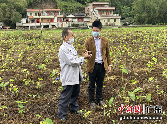 肇庆高要:有一支每天忙碌于各村庄的纪检监察队伍