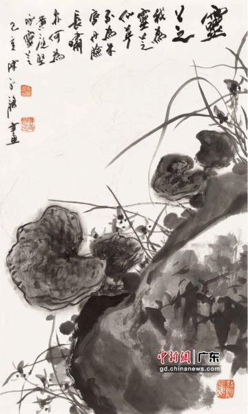 """岭南知名画家绘""""南国本草""""。 春睡画院美术馆供图"""