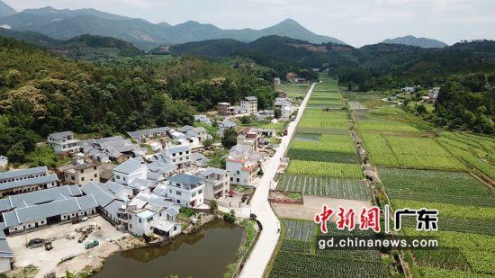 广州南沙对口帮扶梅州35个贫困村产业发展助脱贫