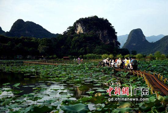 英德九龙峰林小镇国家AAAA级旅游景区。乡村旅游兴旺 带动村民脱贫奔康。姬东摄