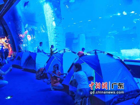 游客夜宿广州正佳极地海洋世界。姬东 摄