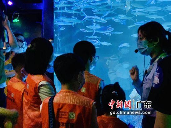 游客夜间到广州正佳极地海洋世界了解海洋知识。姬东 摄