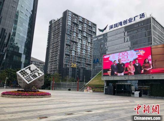 图为位于深圳南山区的深圳湾创业广场。 朱族英 摄